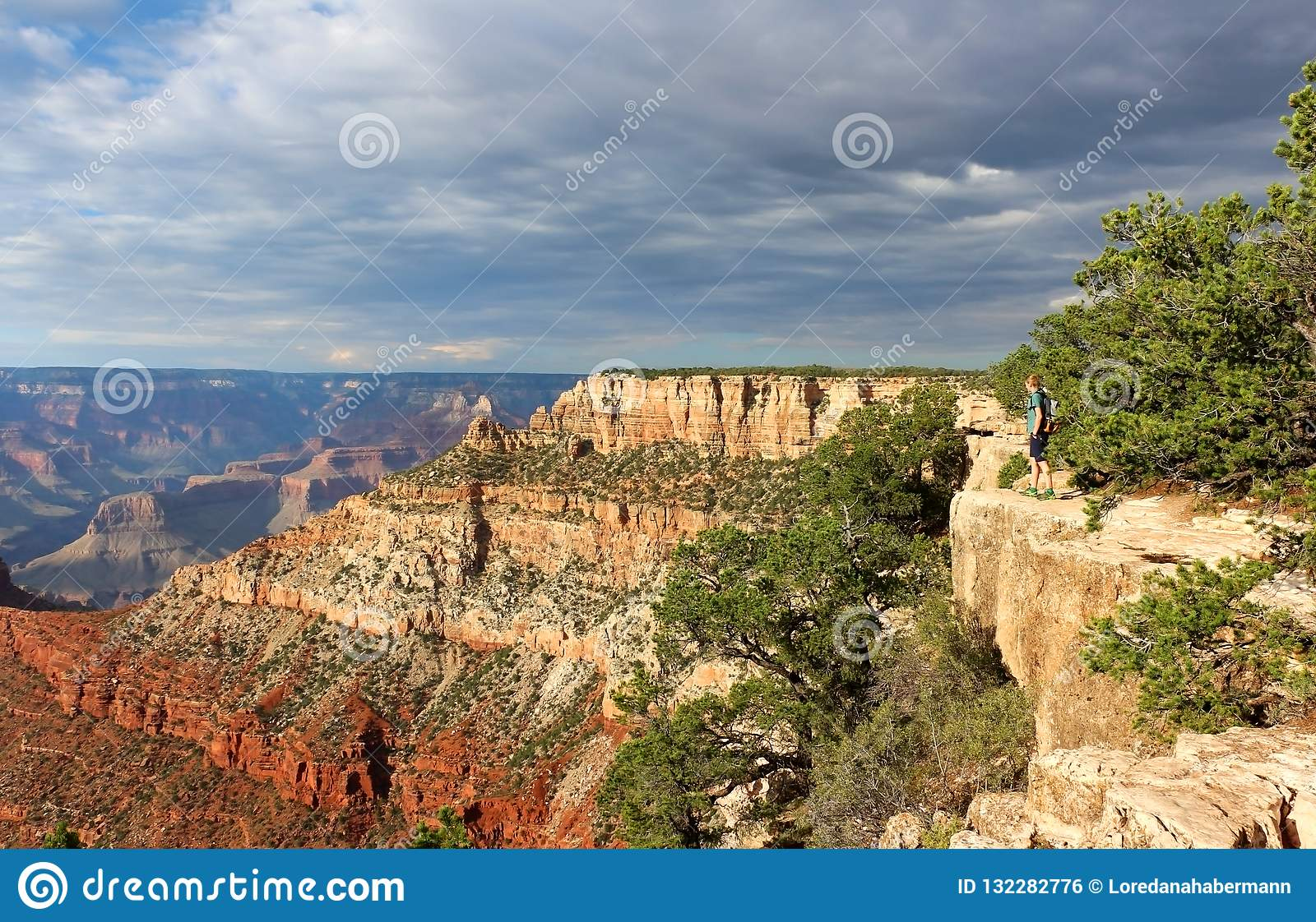 Grand Canyon National Park Arizona Usa Editorial Photo