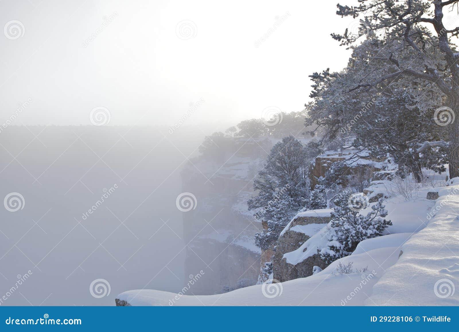 Download Grand Canyon no inverno foto de stock. Imagem de scenic - 29228106