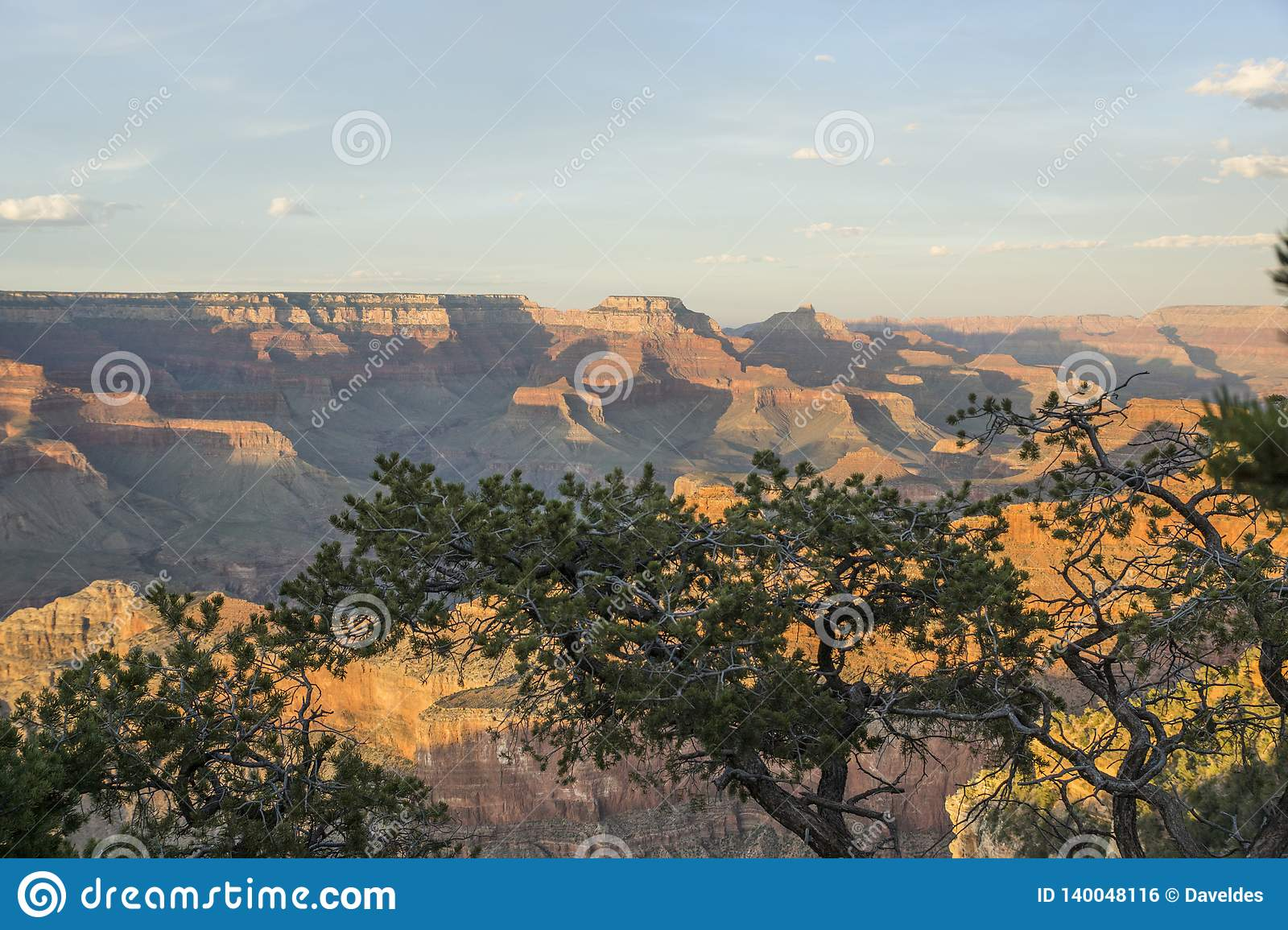 Grand Canyon View Over Trees