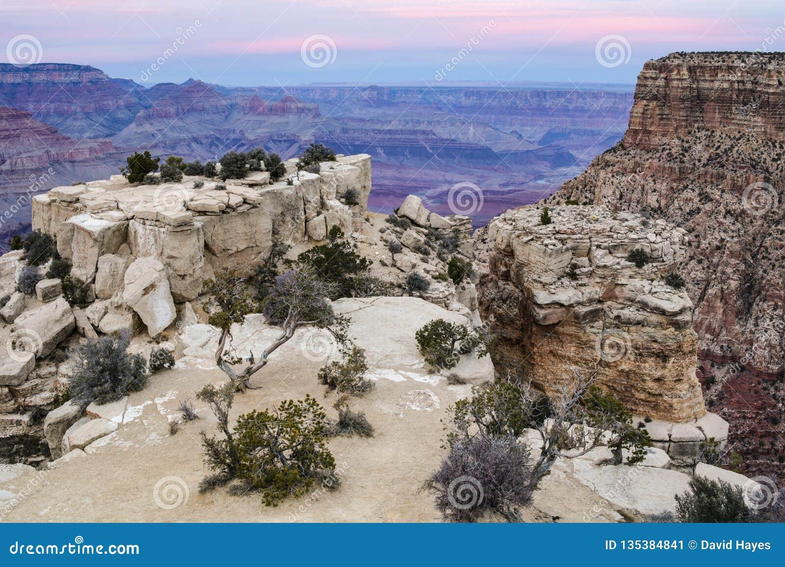 Grand Canyon, widok od Moran punktu Skały i drzewa w przedpolu; jar z różowym niebem za
