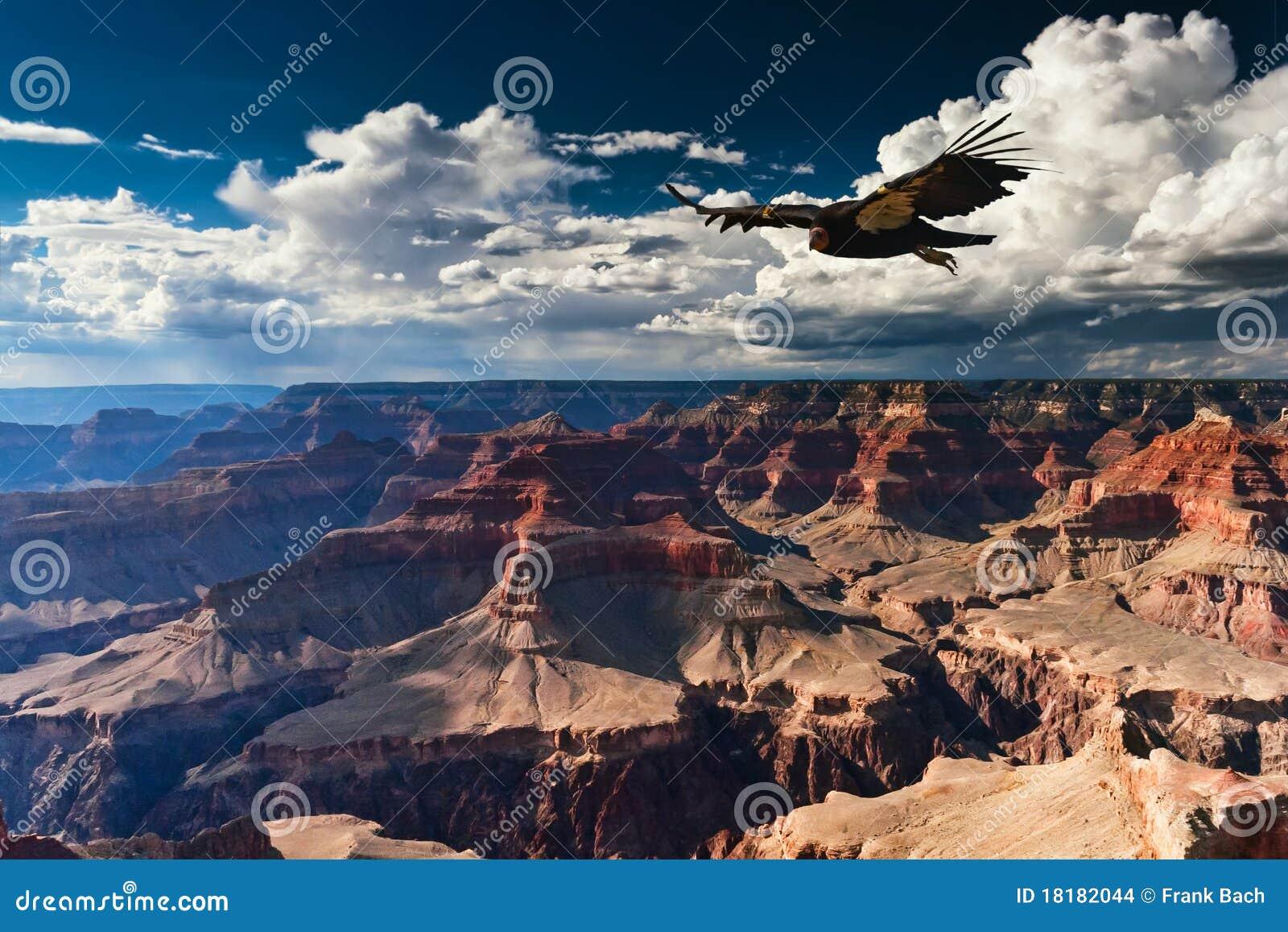 Grand- CanyonNationalpark