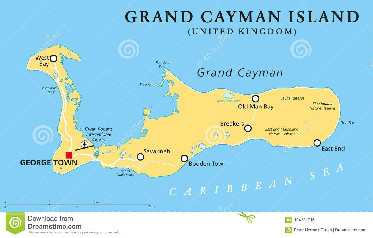 photo relating to Printable Map of Grand Cayman identify Grand Cayman Island Political Map Inventory Vector