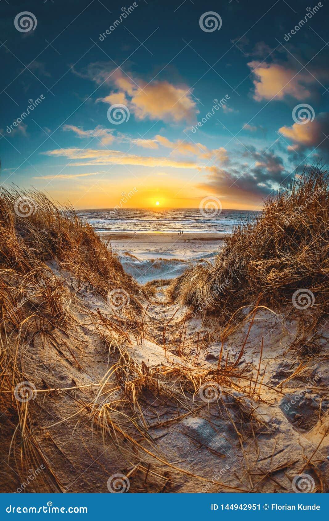 Grand coucher du soleil aux dunes danoises