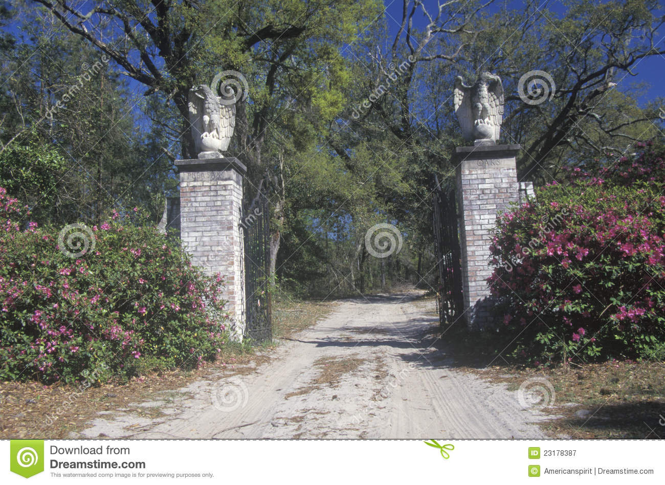 Grand entrance to a plantation royalty free stock for Grand entrances
