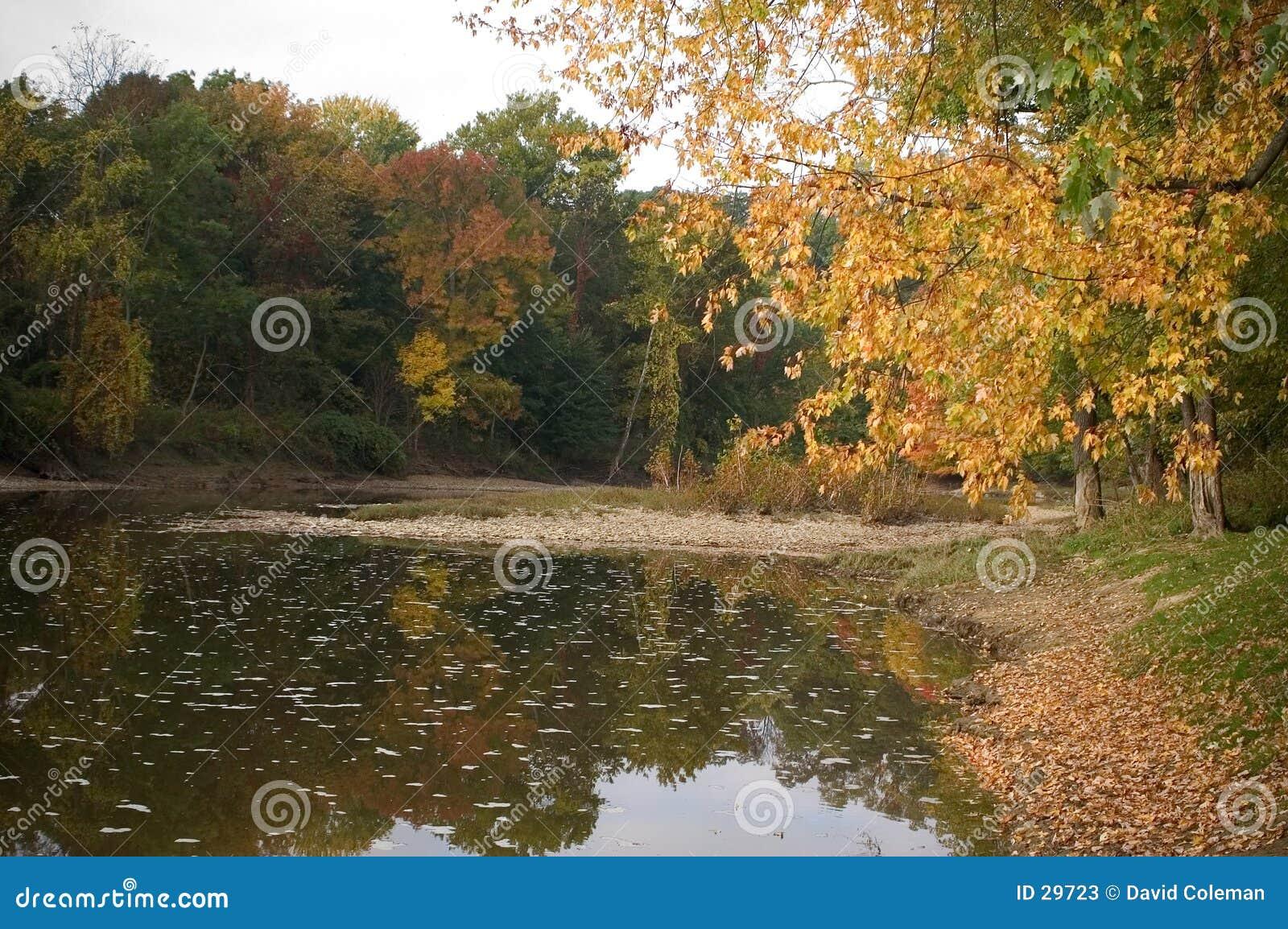 Grand fleuve dans l automne tôt