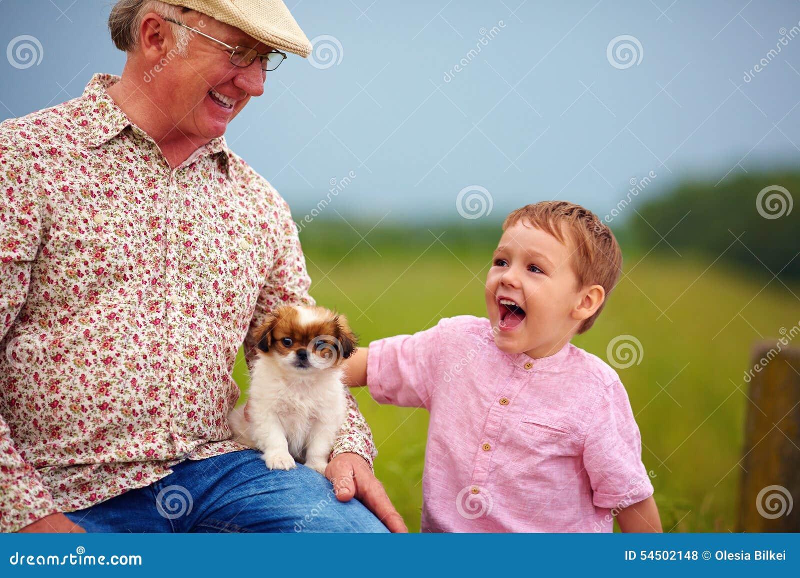 Grand-papa et petit-fils jouant avec le petit chiot, été dehors