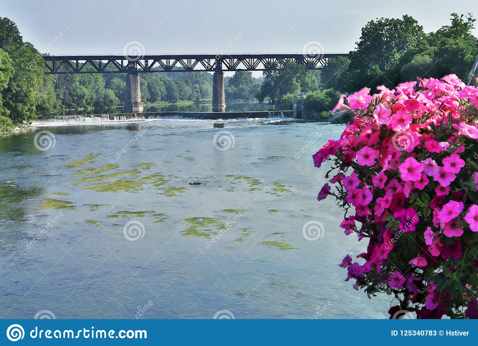 Grand River Flow >> Grand River At Paris Ontario Canada With Flowers In