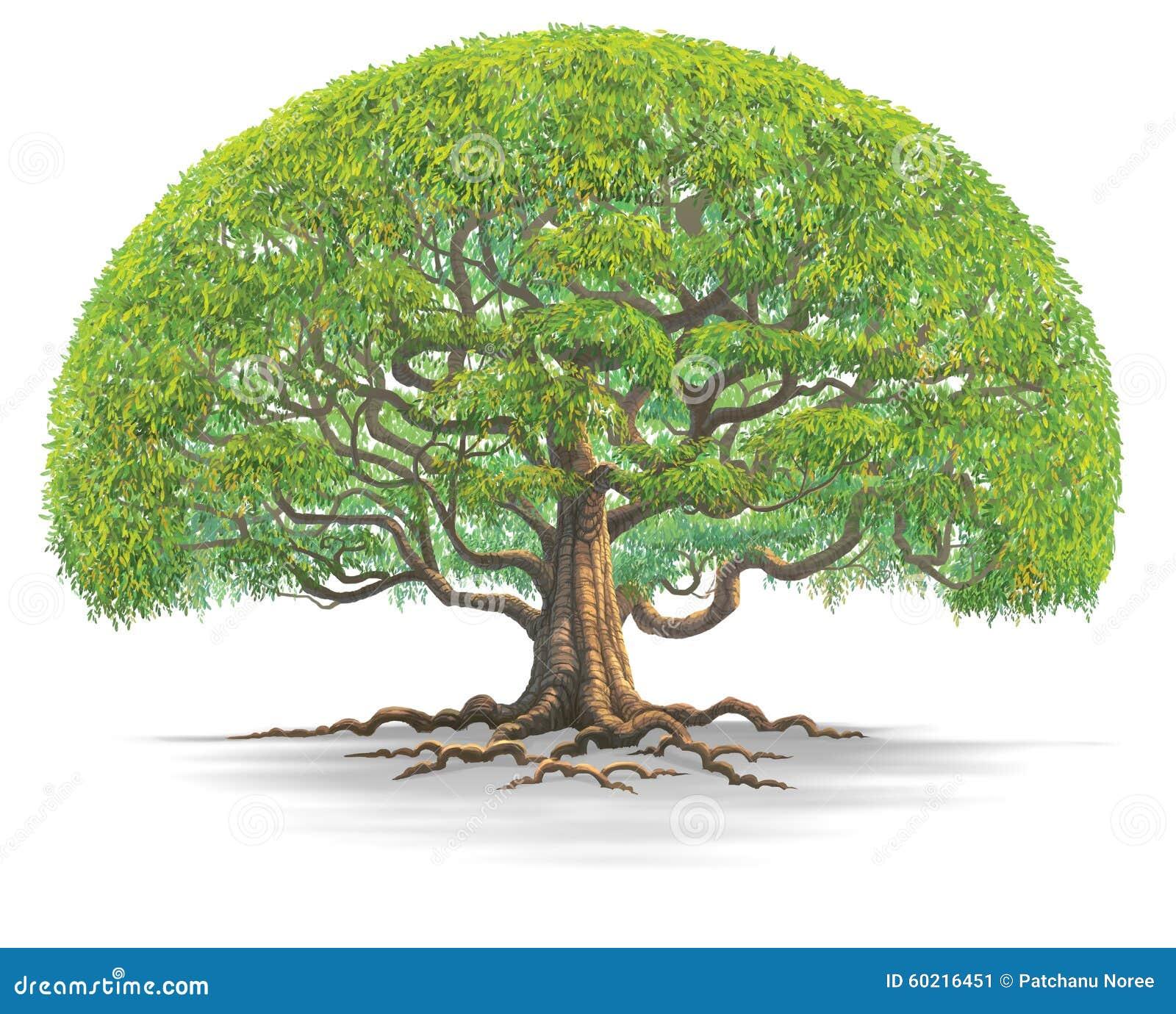 Grand tree03