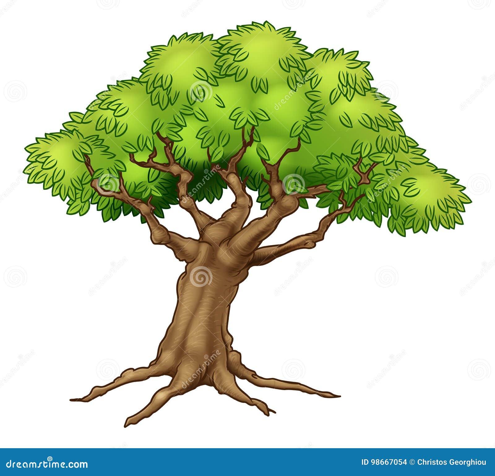 Grand vieil arbre