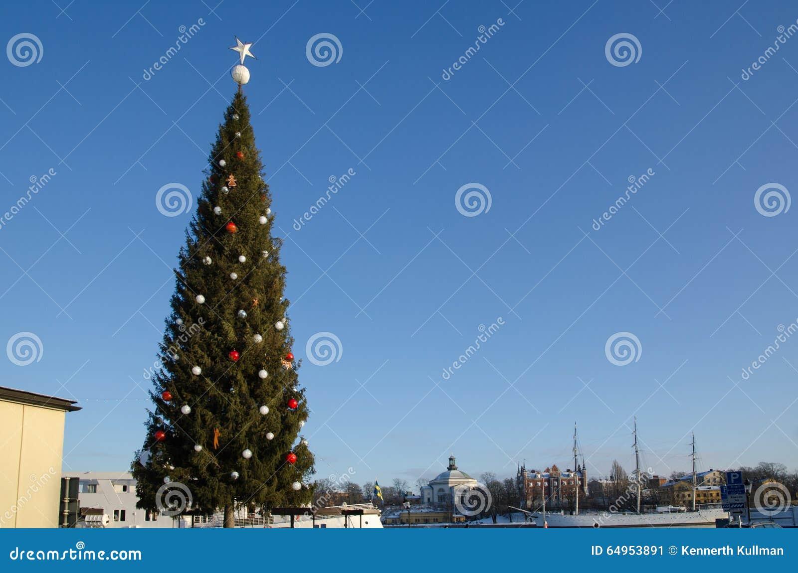 Albero Di Natale Grande.Grande Albero Di Natale A Stoccolma Fotografia Editoriale Immagine