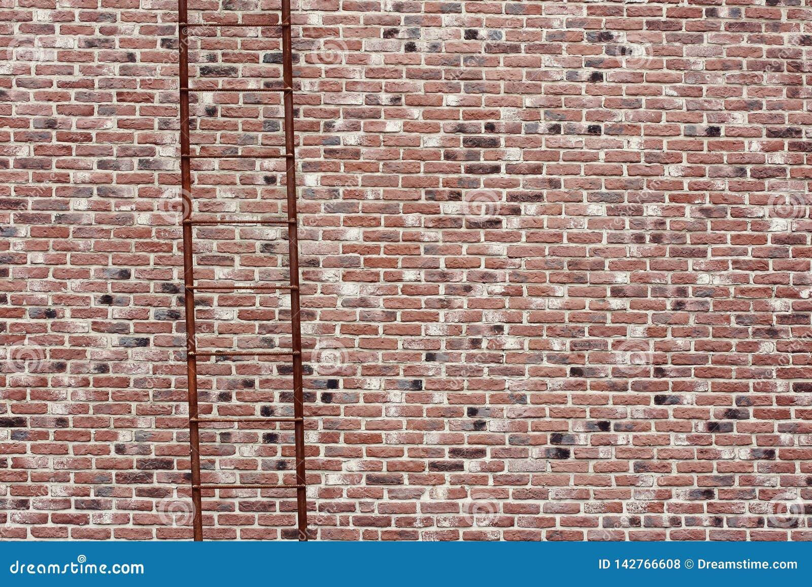 Grande copertura della muratura