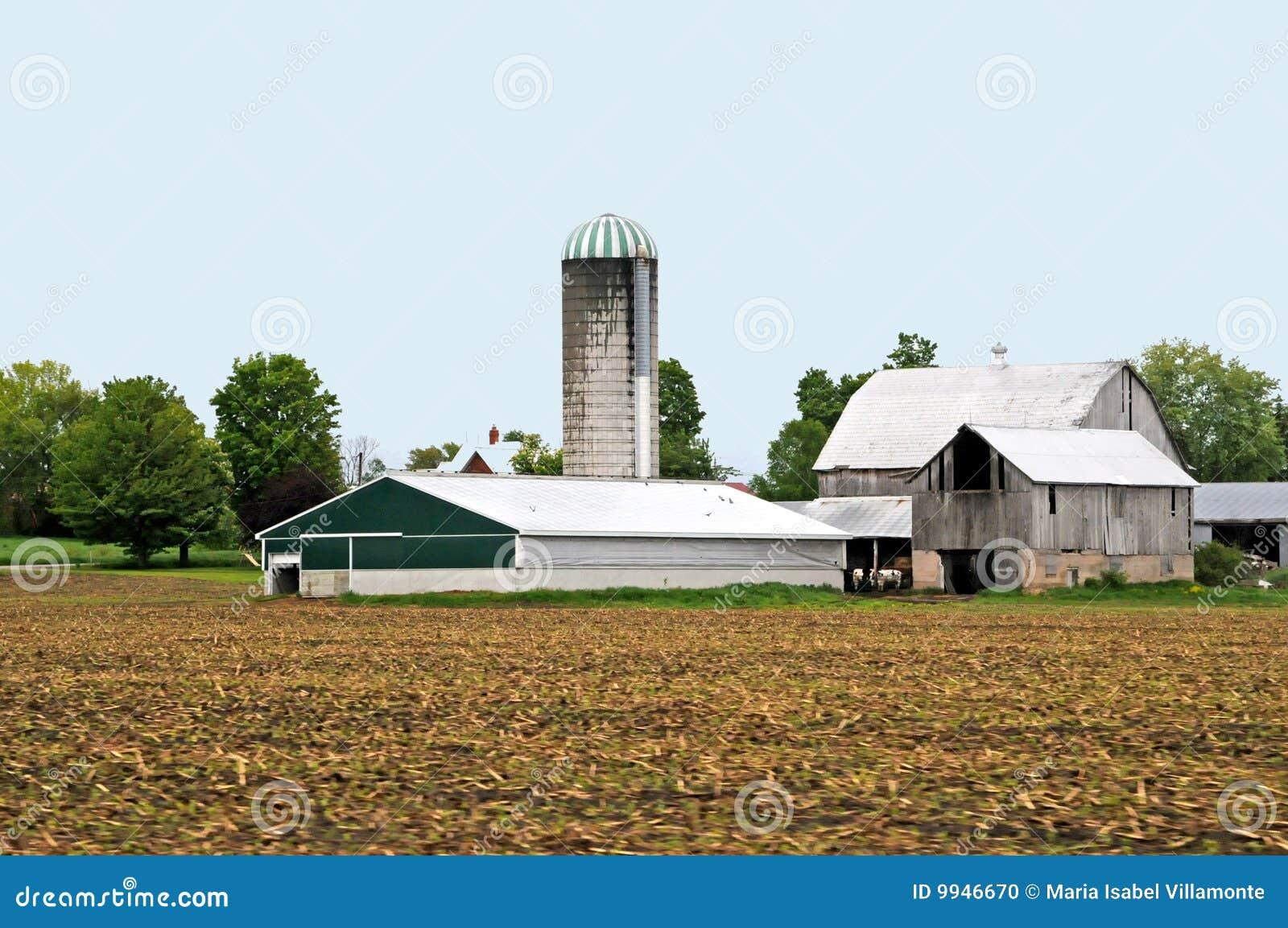 Grande ferme