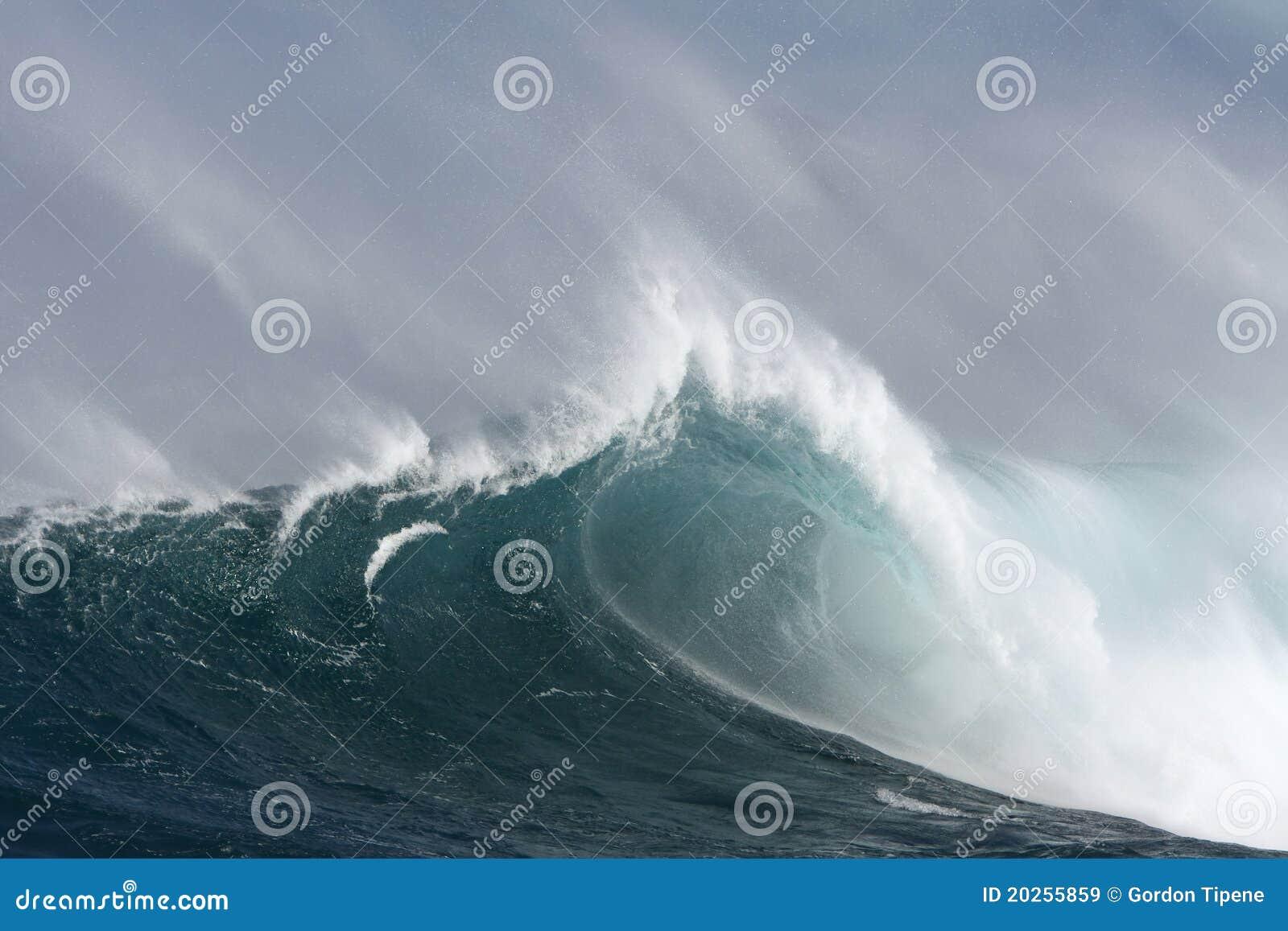 Grande onde de vague déferlante avec le baril et le vent.