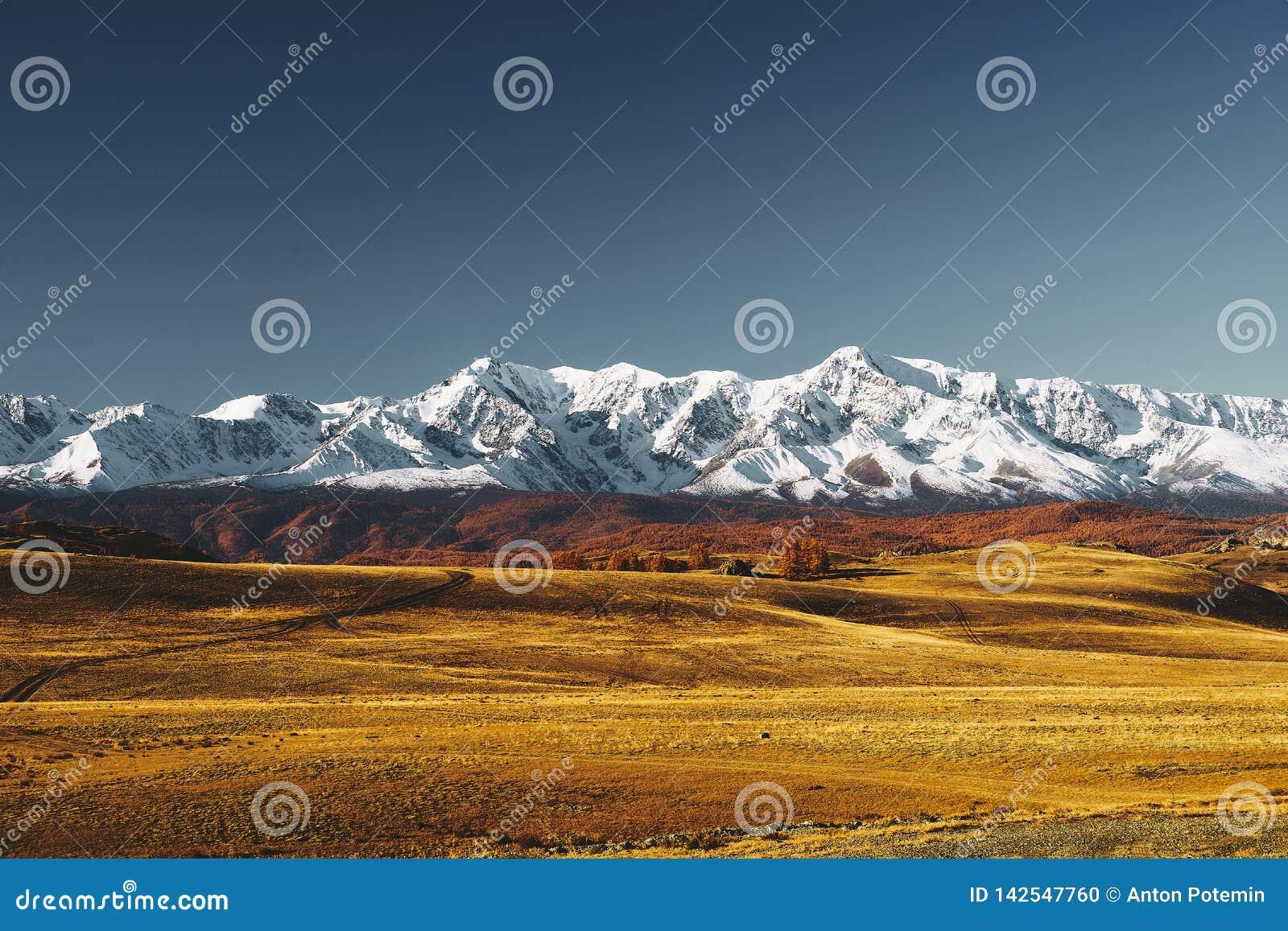 Grande paesaggio delle montagne di Altai e della steppa di Kurai