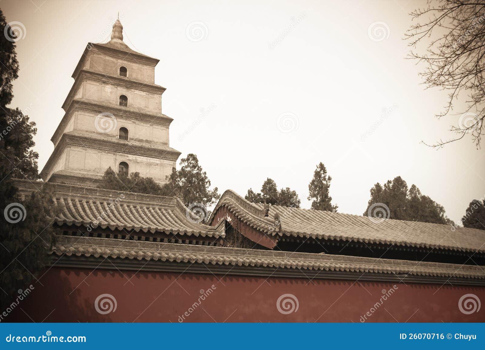 Grande pagoda sauvage chinoise d oie