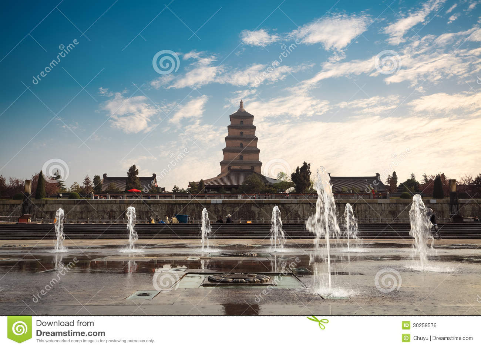 Grande pagoda sauvage d oie avec la fontaine