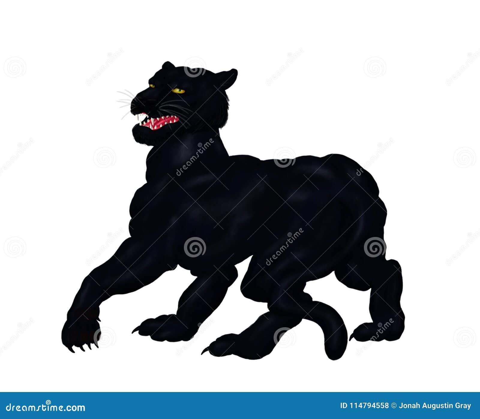 La Grande Panthère Noire grande panthère noire féroce de vagabondage regardant 2018