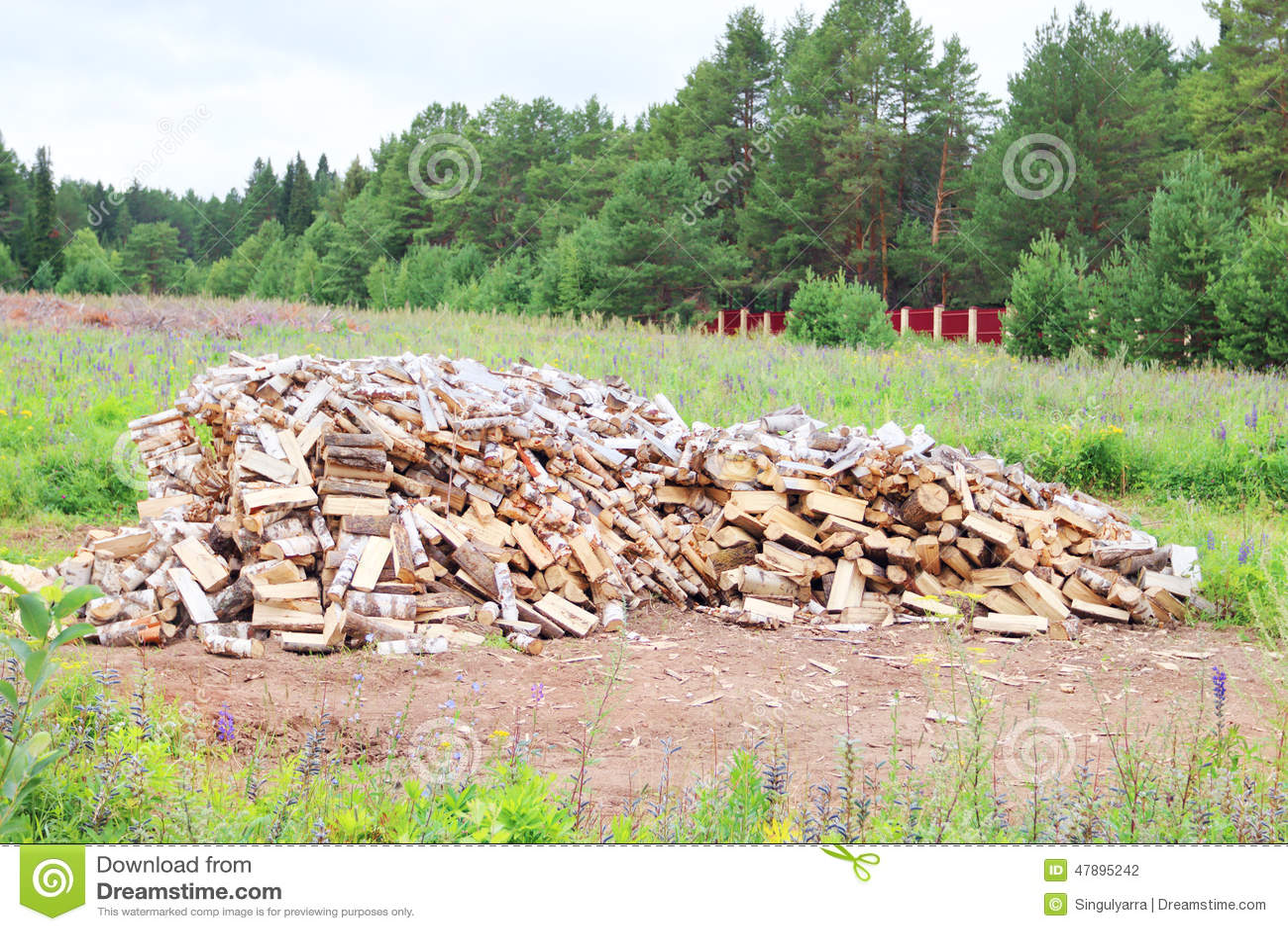 grande pile du bois de bouleau dans la clairi re entour par la barri re photo stock image. Black Bedroom Furniture Sets. Home Design Ideas