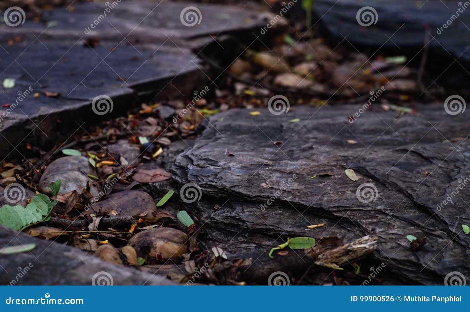 Grande roche sur le groud pour le fond