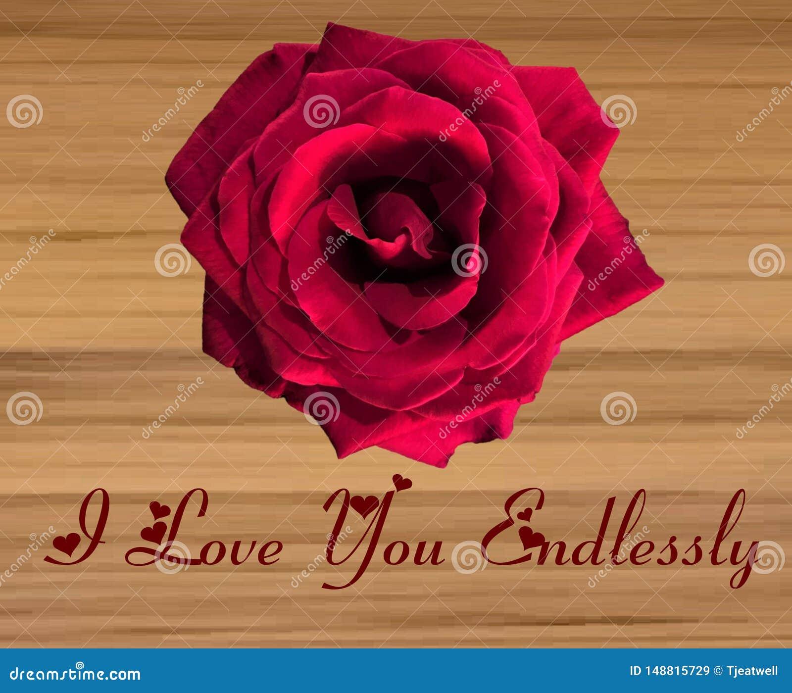 Grande Rose rouge simple sur un fond en bois