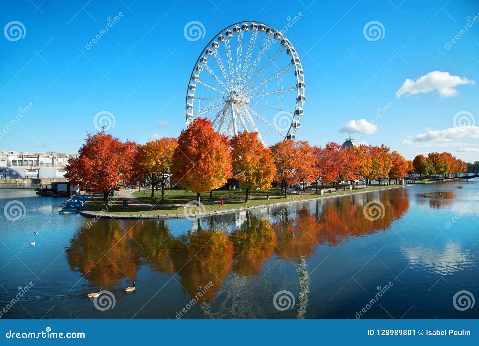 Grande roue de Montréal pendant l automne