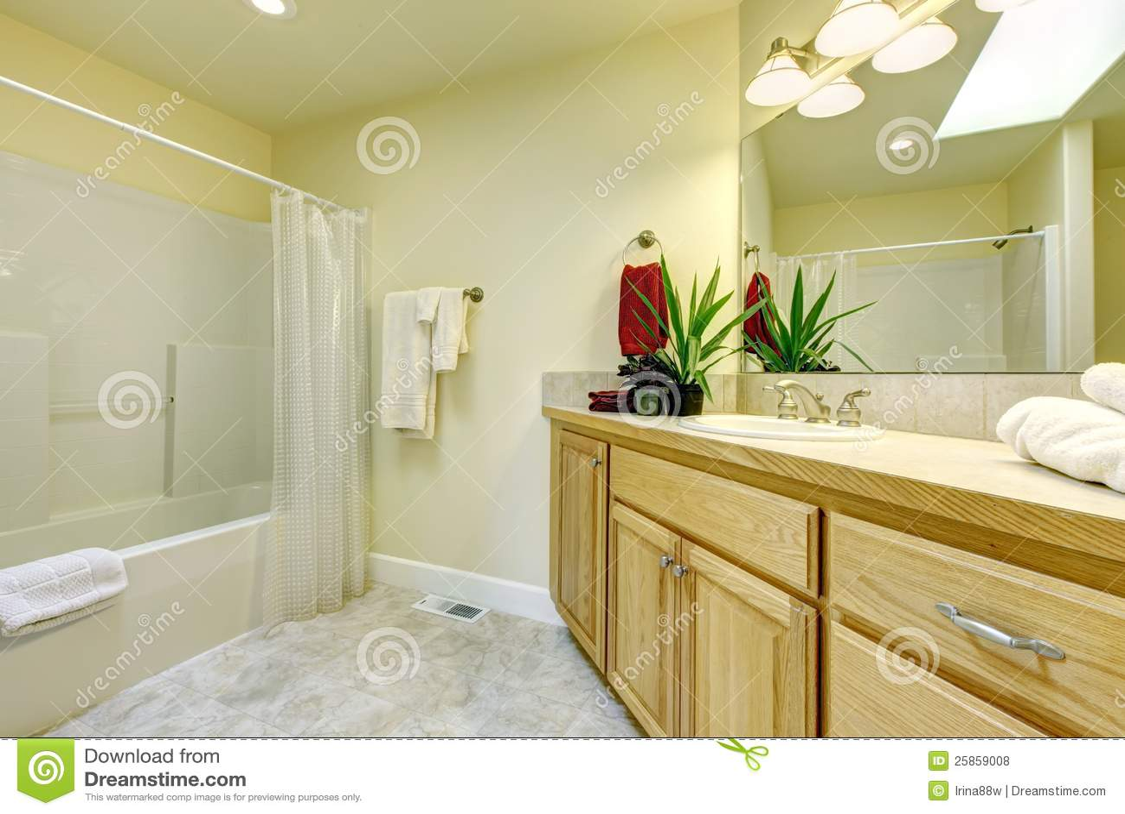 Grande salle de bains simple avec des modules de baquet et for Module salle de bain