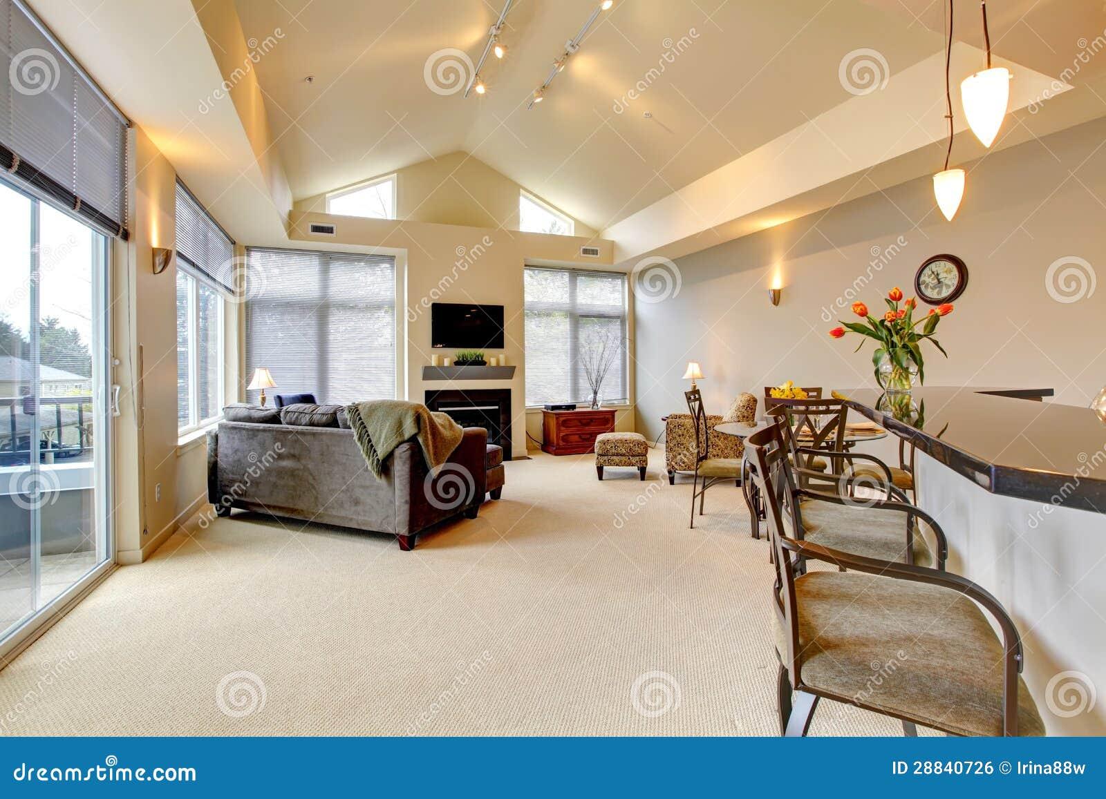 salone e cucina di lusso moderni fotografia stock - immagine: 81396597 - Salone Cucina