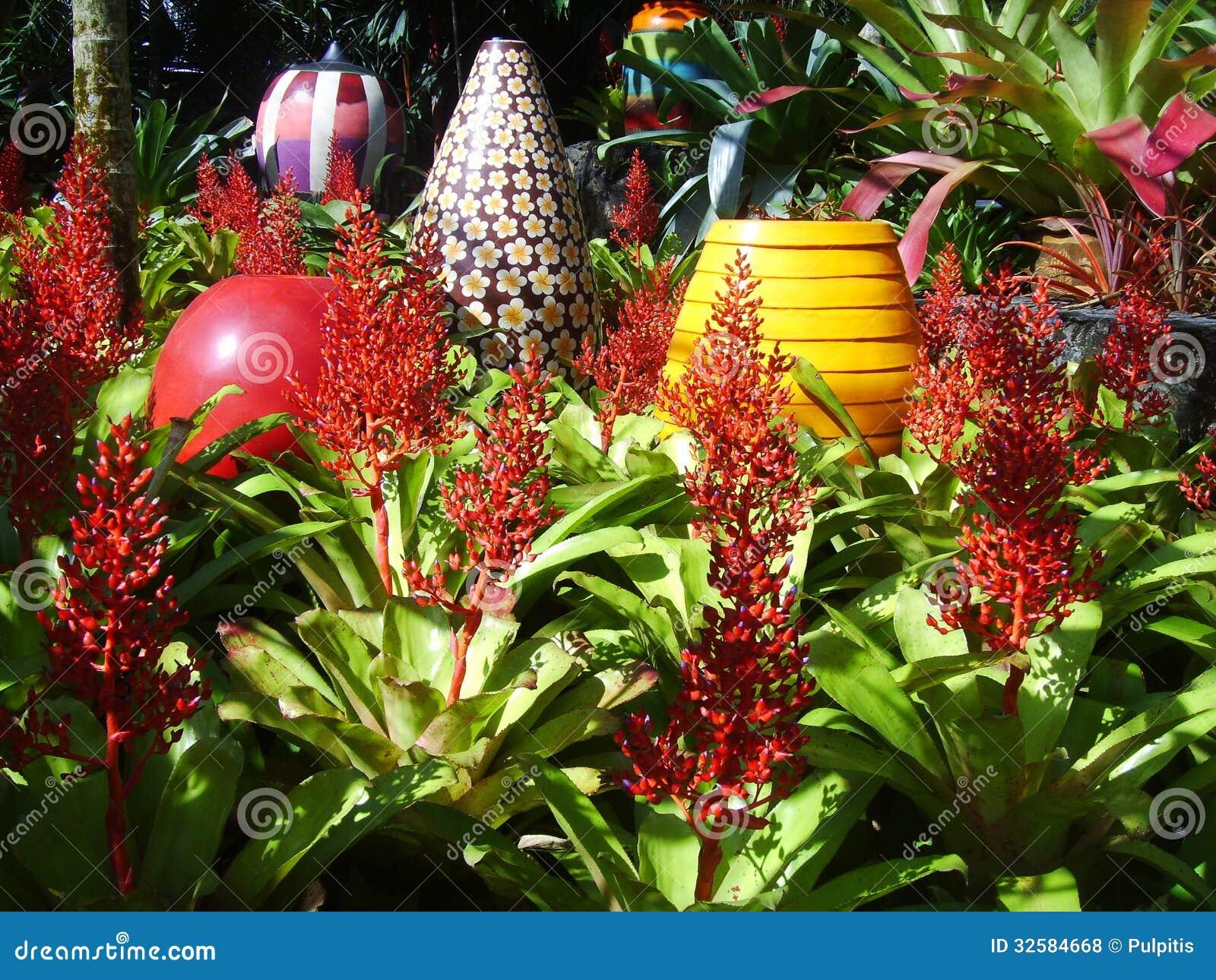 Cheap download grande vaso fiorito per decorare un giardino di bromeliacea fotografia stock - Decorare un giardino ...