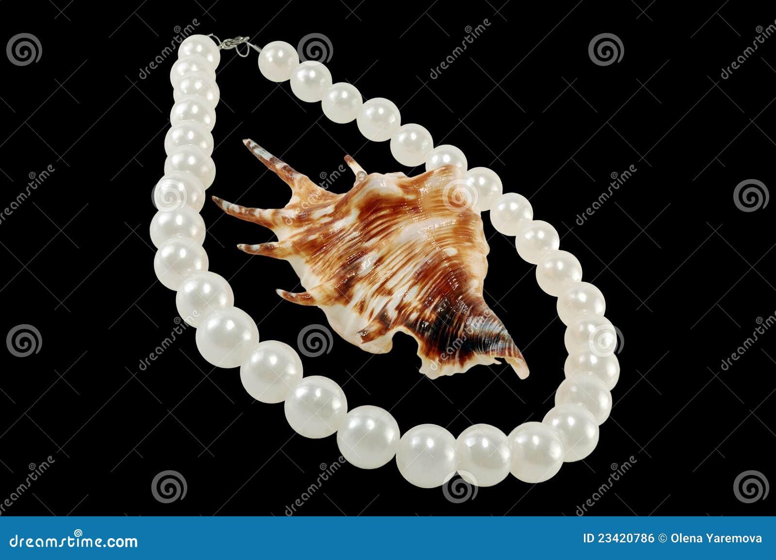 Grandes pérolas com um seashell