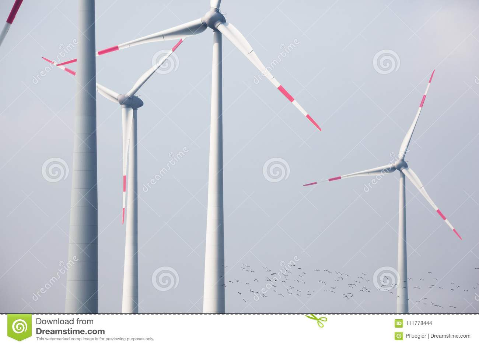 Grandes turbines de vent