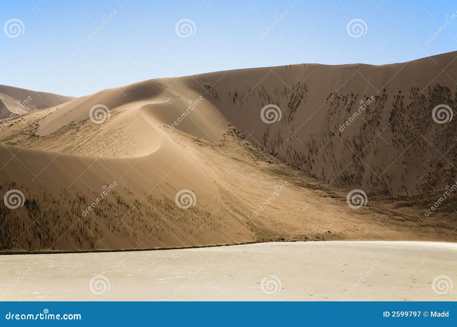 Grandi dune