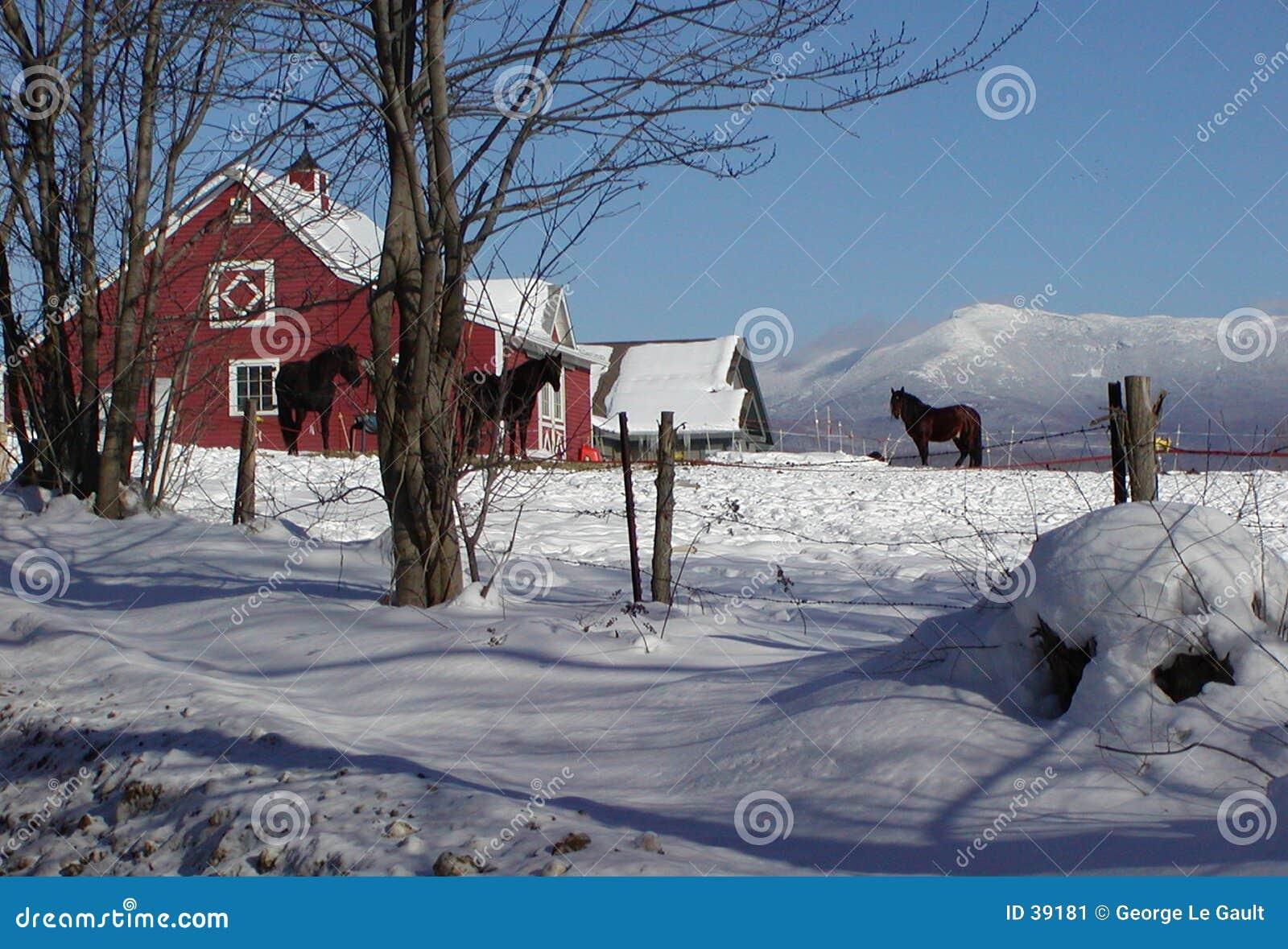 Granero de caballo de Vermont