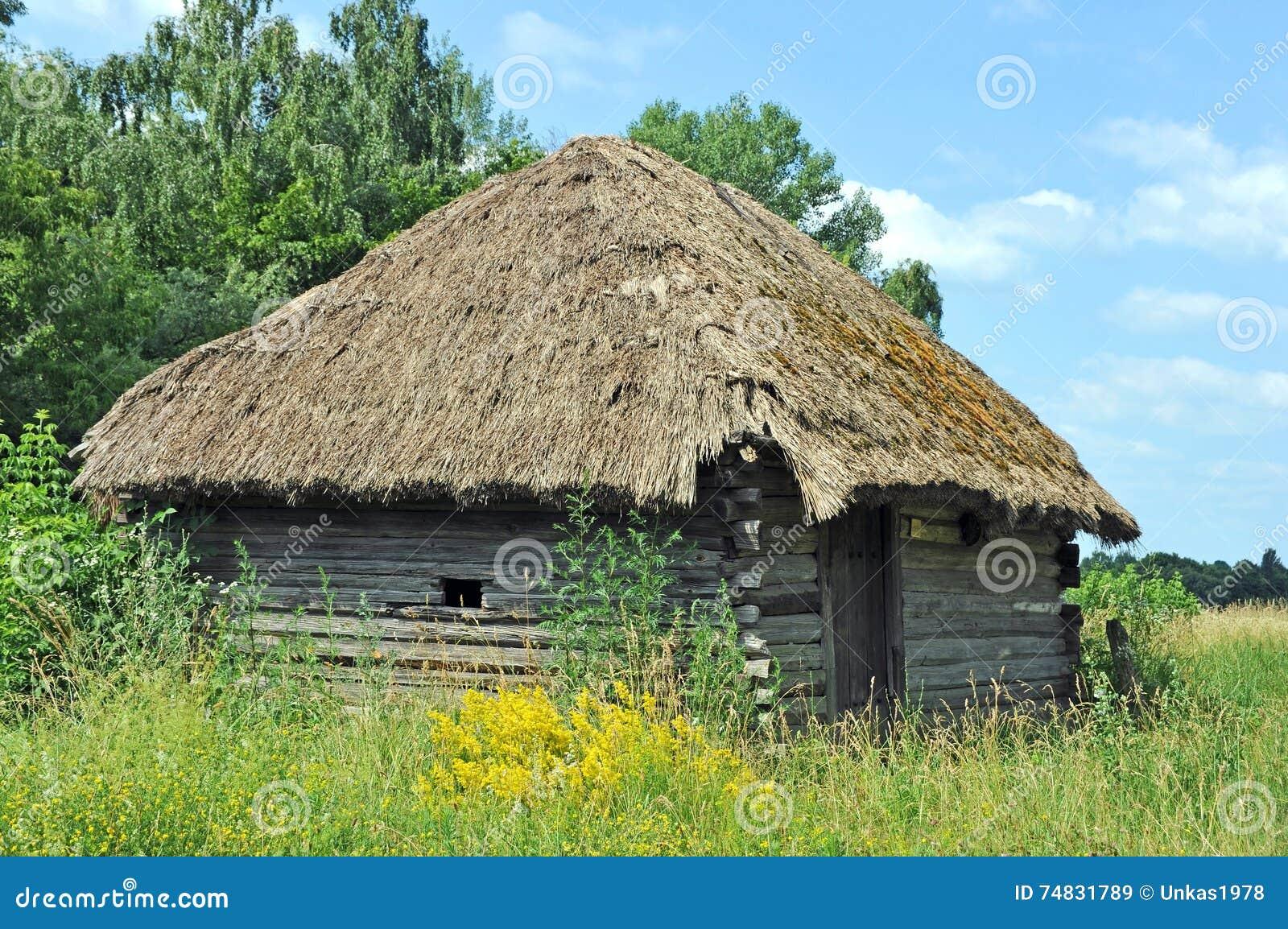 paille pour toit de paillote maison design. Black Bedroom Furniture Sets. Home Design Ideas