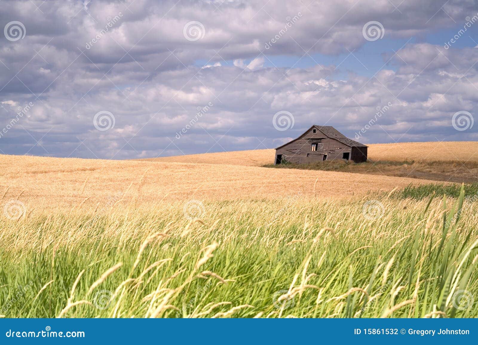 Grange rustique dans un domaine de ferme.