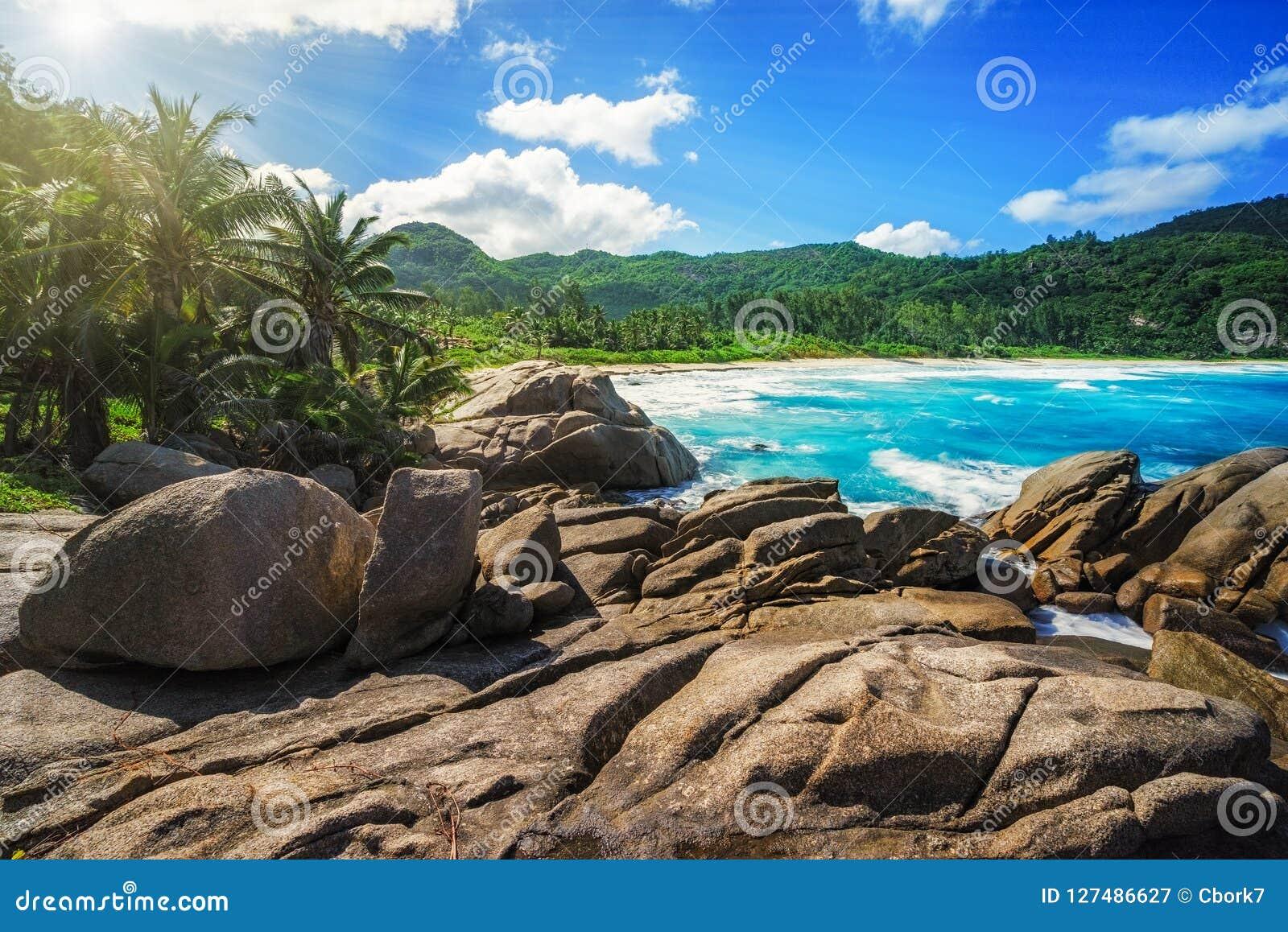 Granietrotsen, palmen, wild paradijs tropisch strand, sey politiebaai,