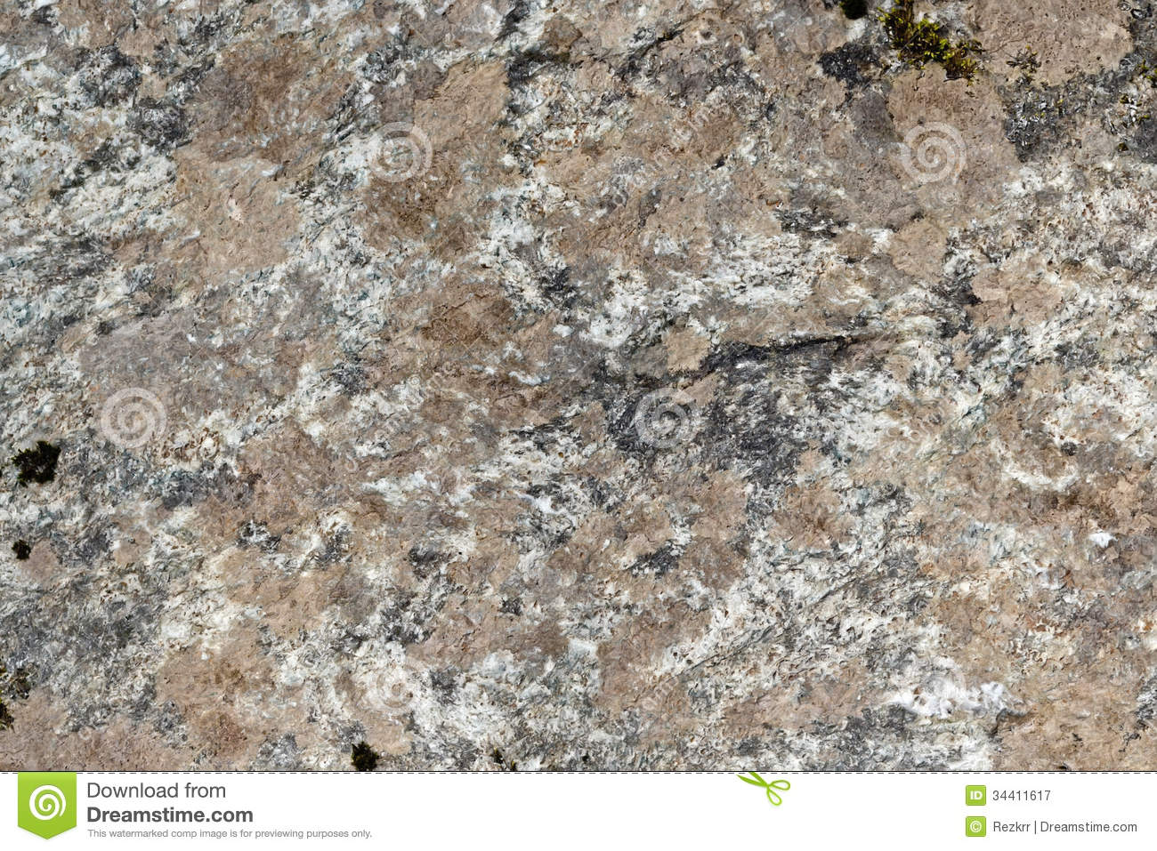 Granite Brown And White Stock Image Image Of Grained 34411617
