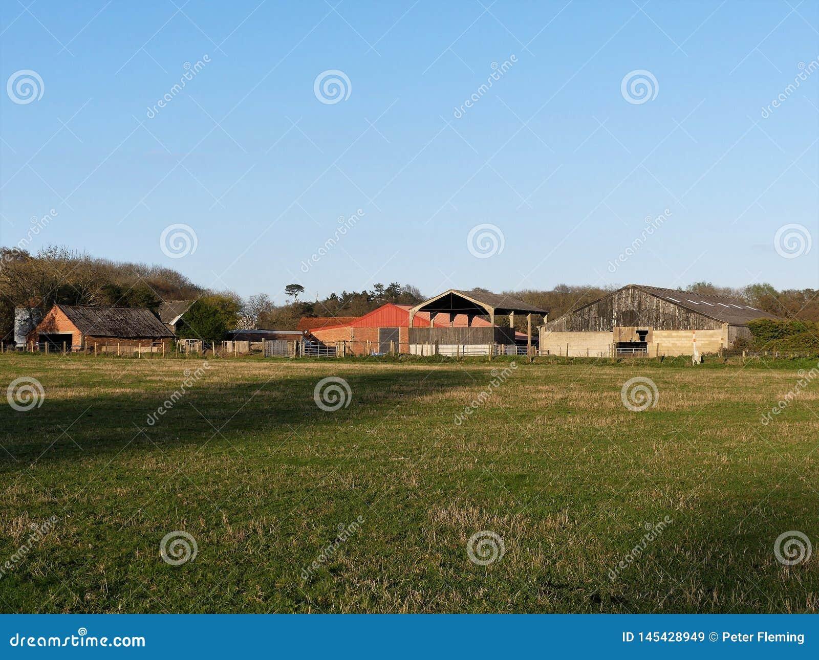 Granja de Bullsland, Chorleywood