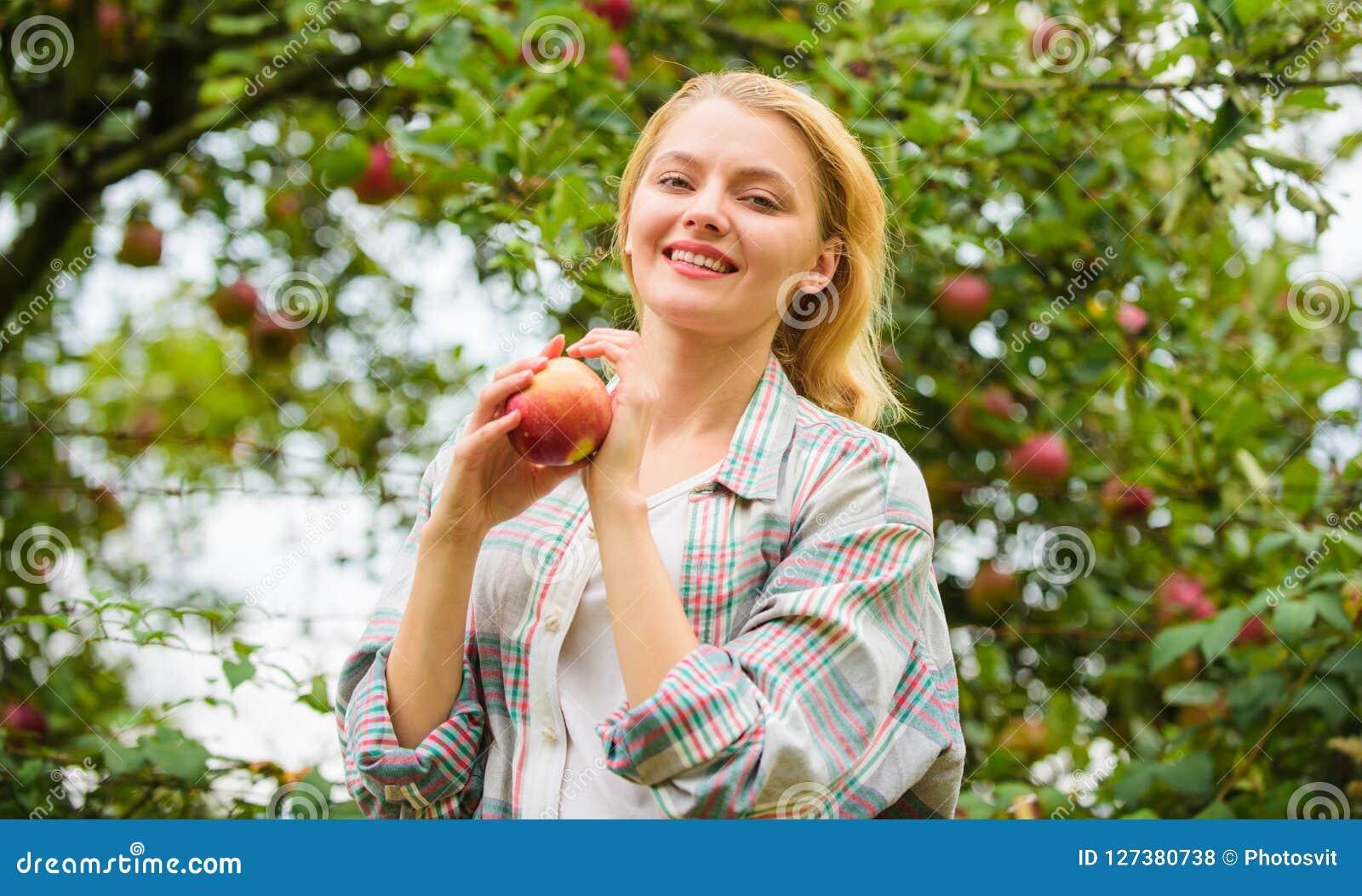 Granjero bastante rubio con la manzana del rojo del apetito El Local cosecha concepto Fondo del jardín de la manzana del control