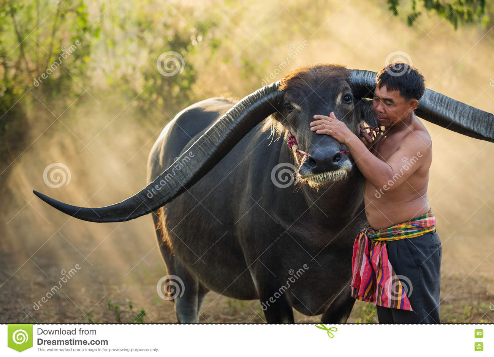 Granjero con el búfalo
