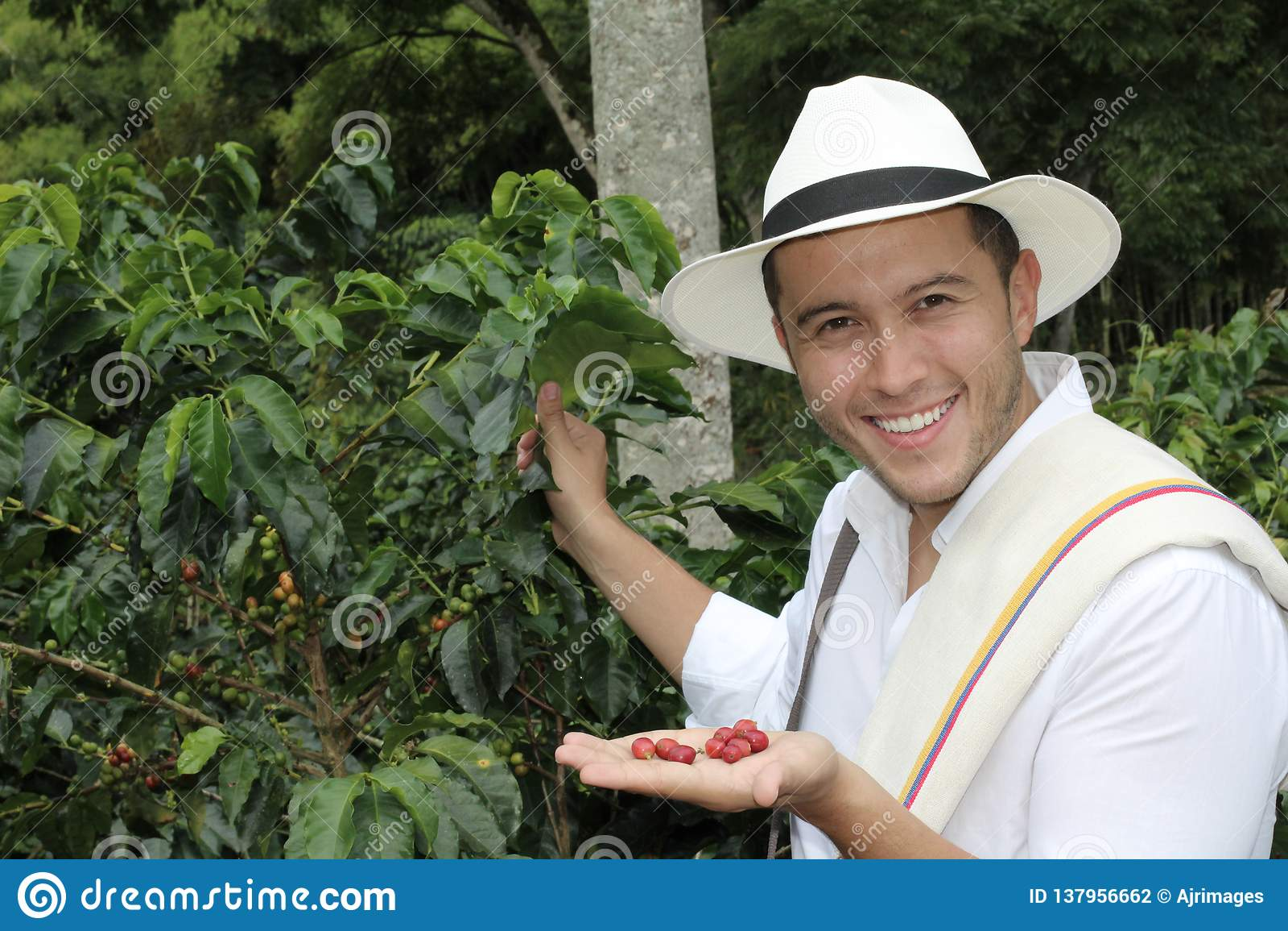 Granjero del café en los campos