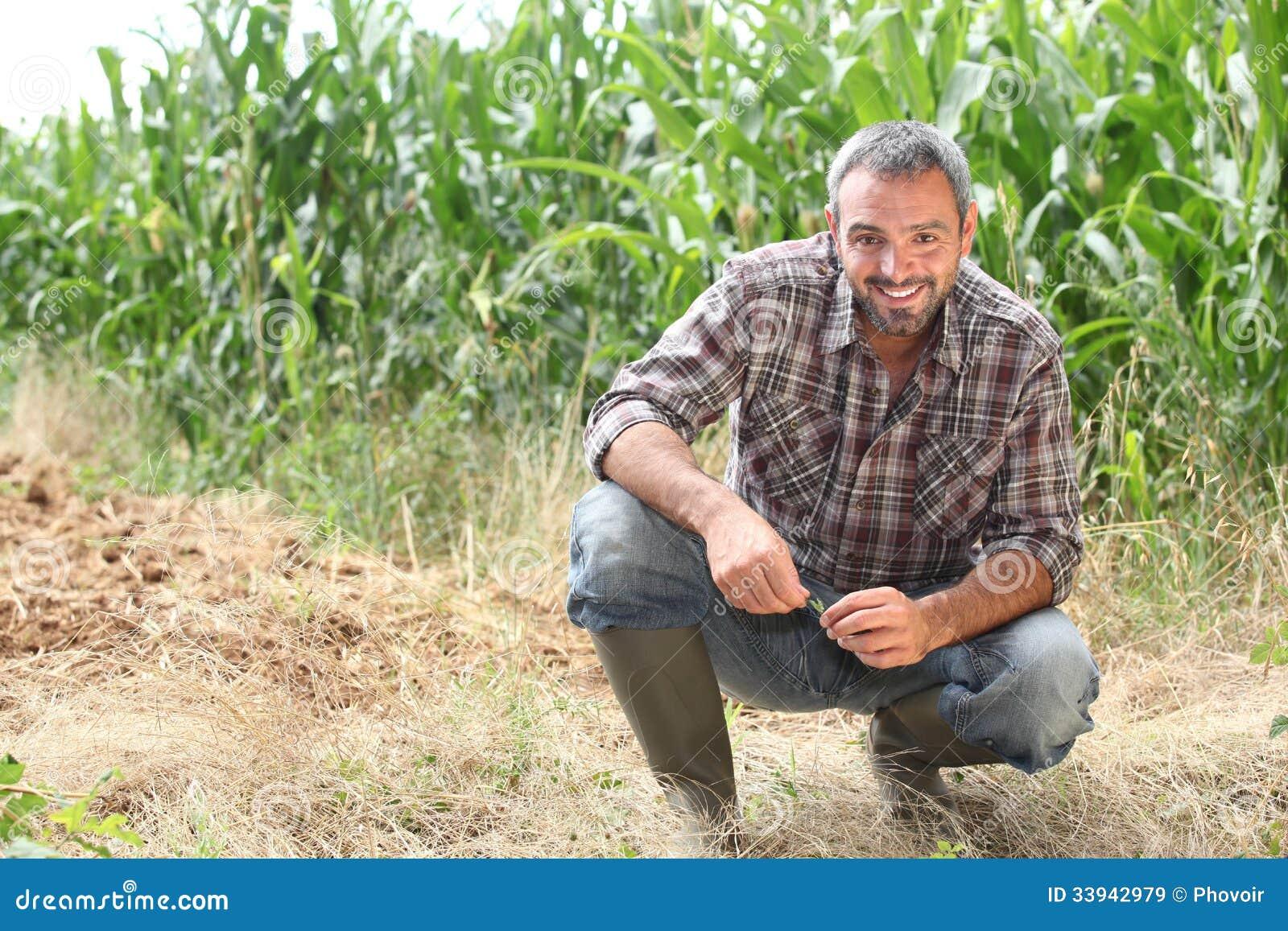 Granjero que se arrodilla por las cosechas