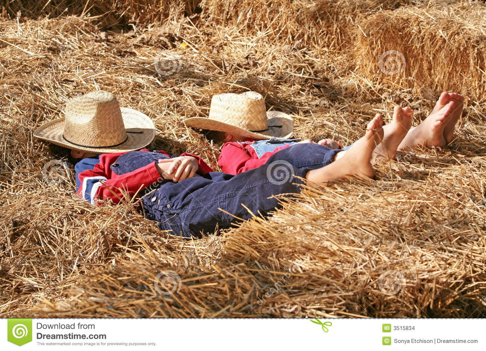 Resultado de imagen de hermanos granjeros
