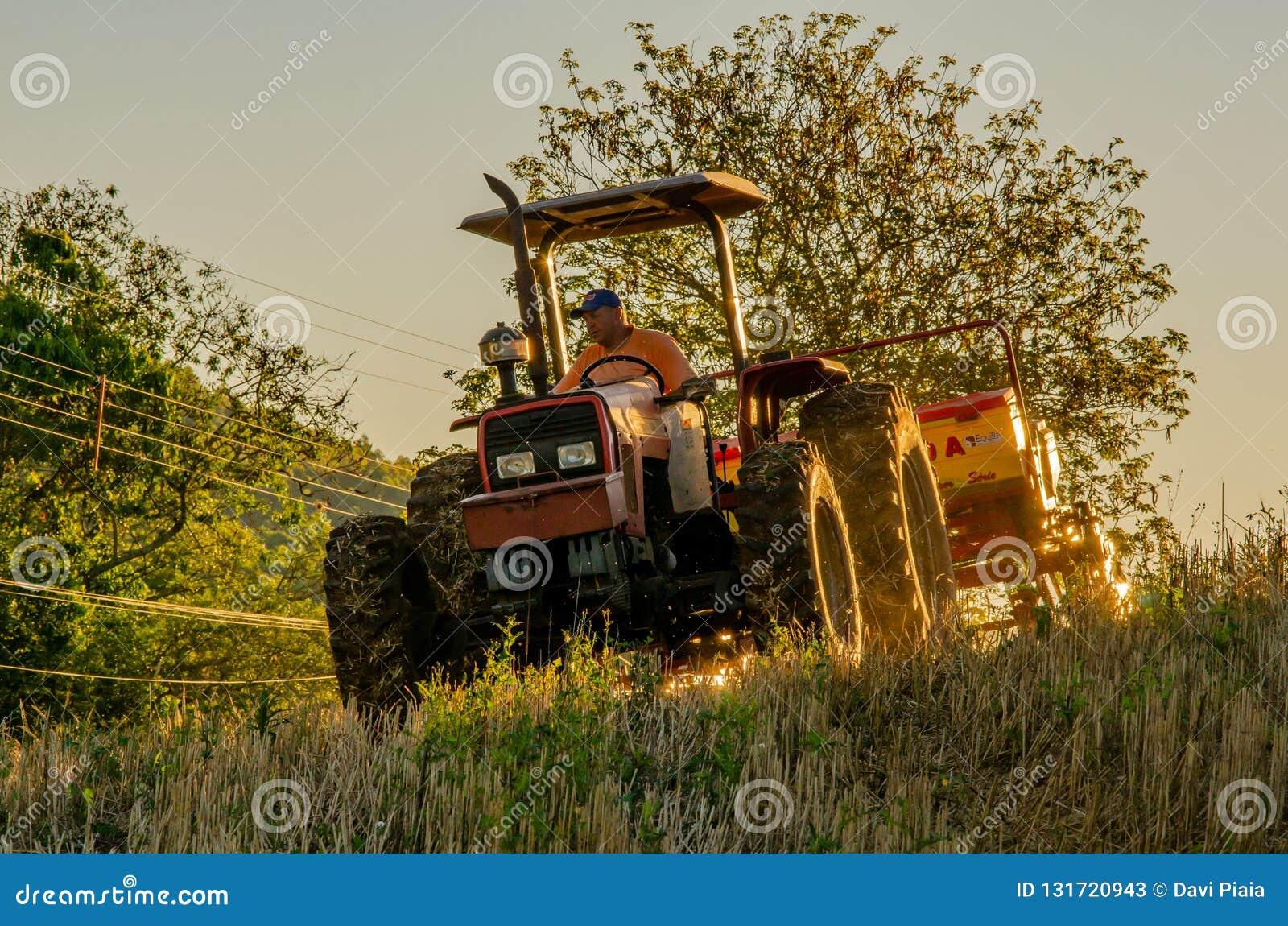 Grano che pianta, agricoltura, uomo del campo