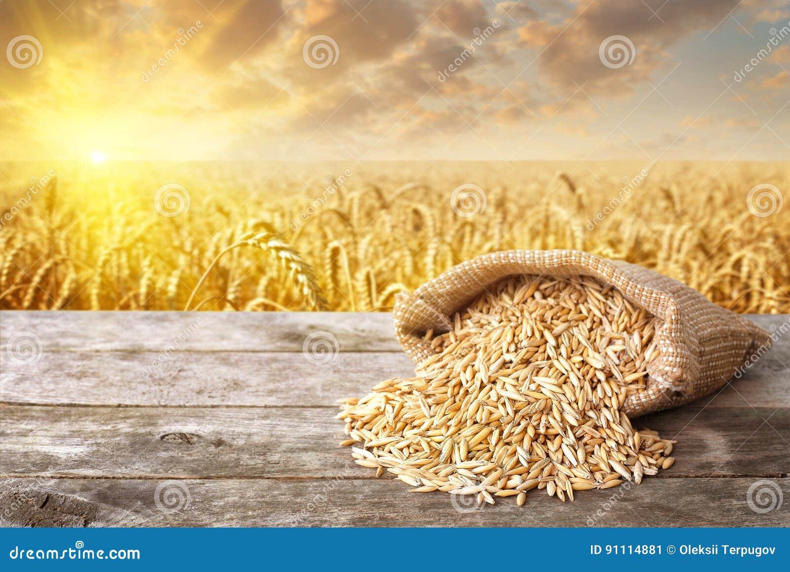 Cascara de los cereales