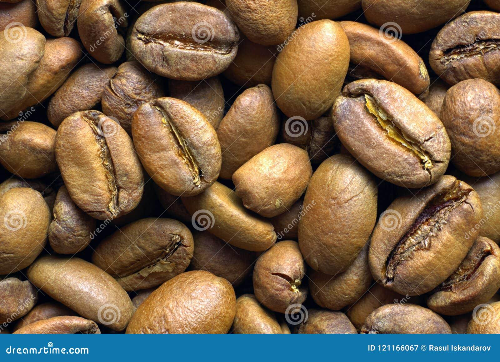 Granos de café asados luz, visión superior