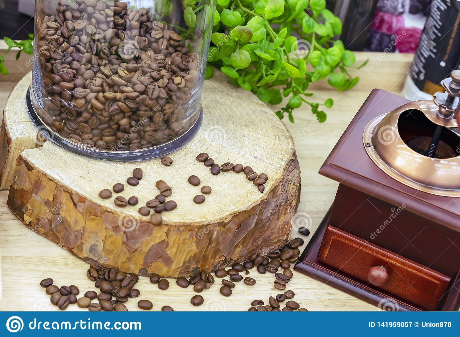 Granos de café en el corte de la sierra del árbol al lado de la amoladora de café