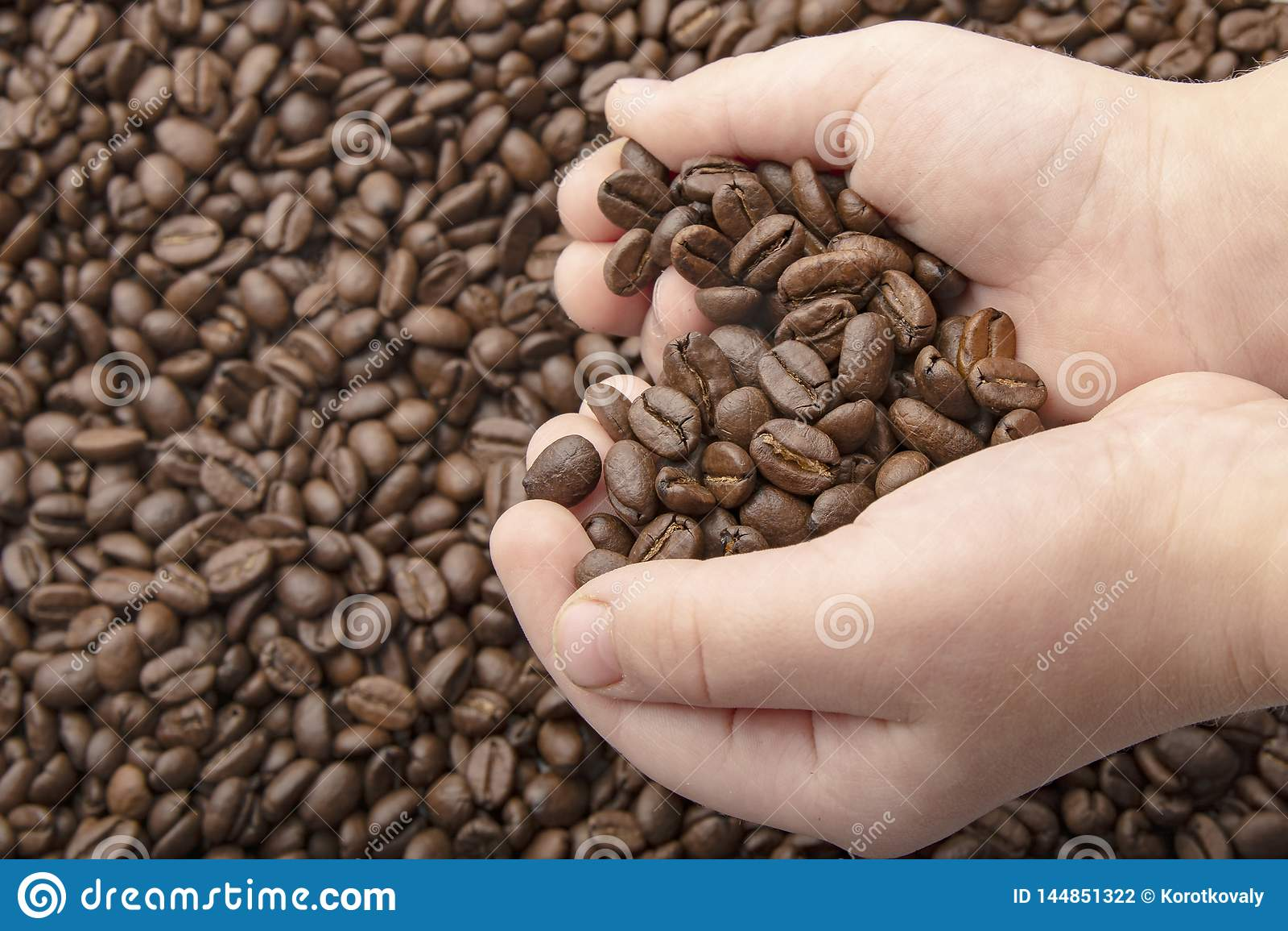 Granos de caf? en manos con el coraz?n del amor en fondo del caf? Fondo asado de los granos de caf?