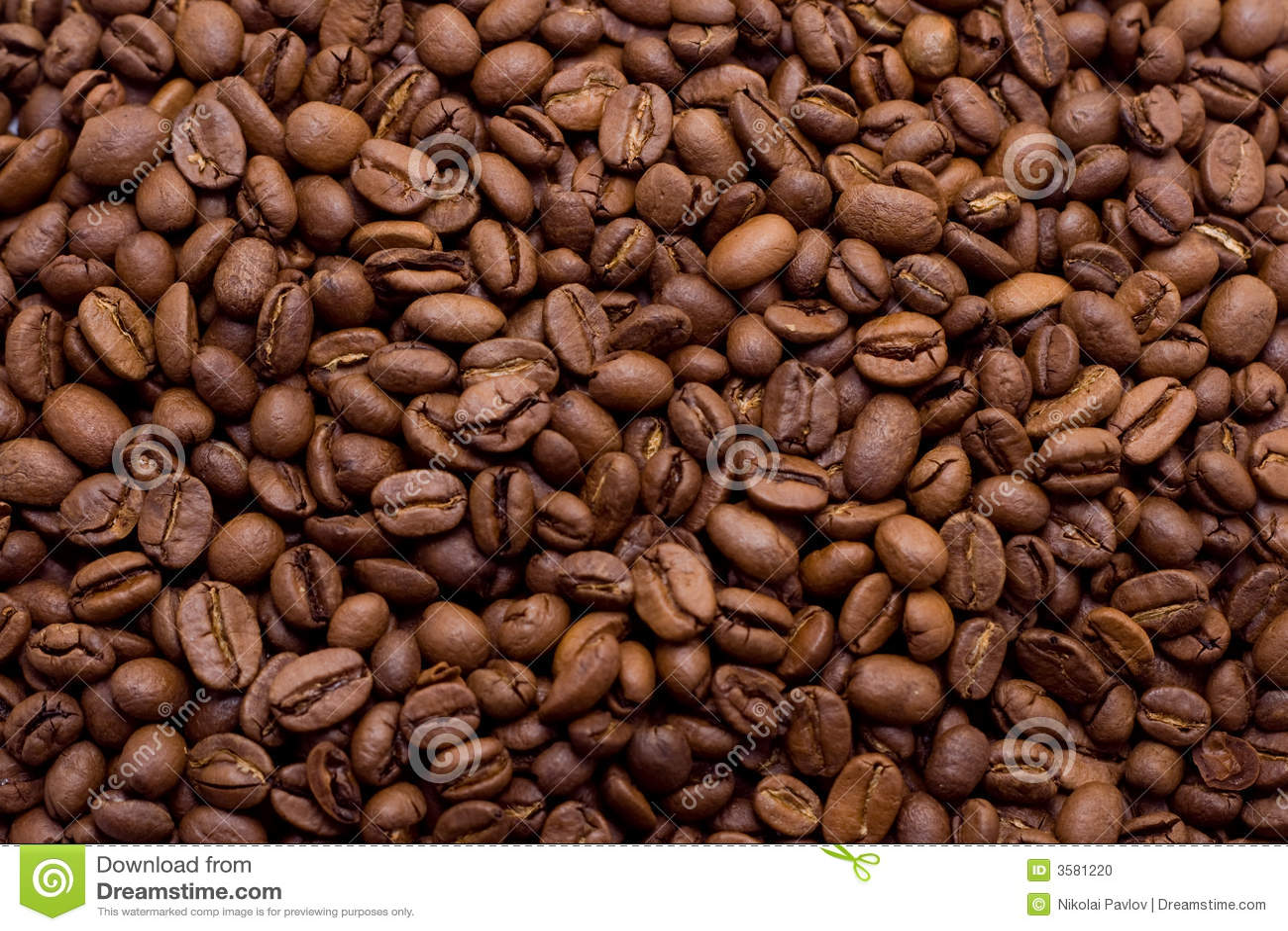 Granos de café en primer macro