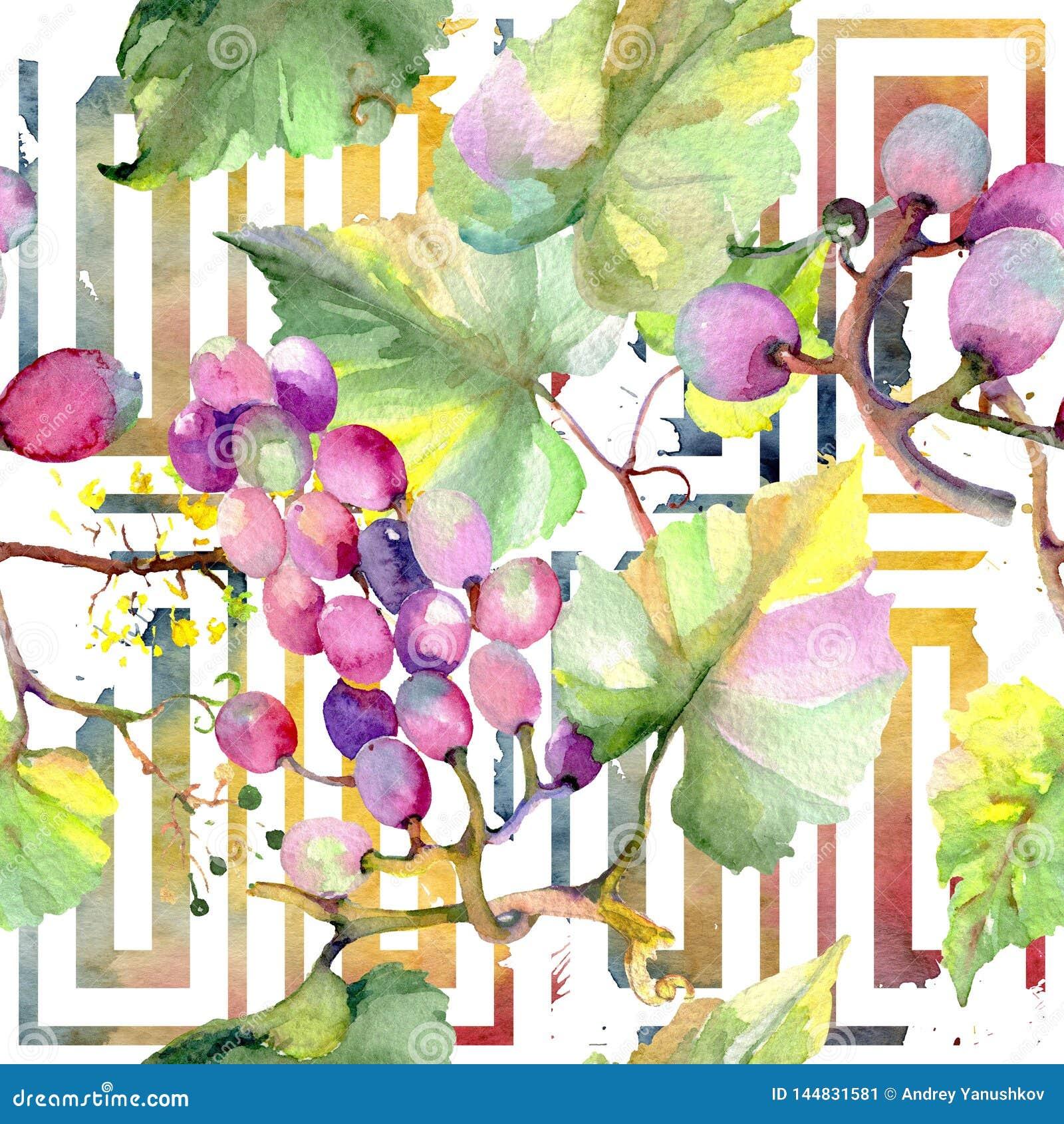 Grape Berry Healthy Food Watercolor Illustration Set