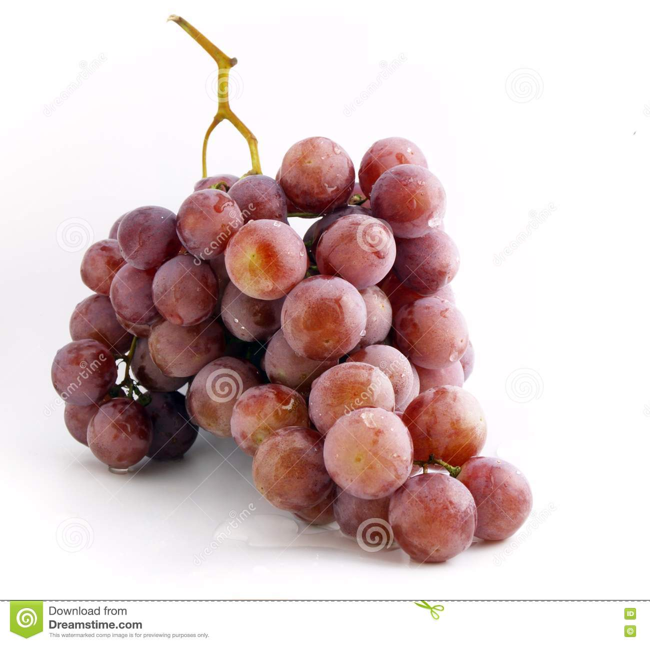 Free Stock Photography Grape Bunch Picture Image 3027507